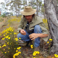 Industry Native Grass ID course 2012, Paul Foreman at Lockwood South site