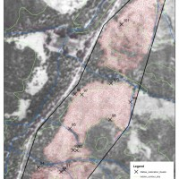 Wedderburn Blue Mallee Restoration Site - 1952 aerial photography