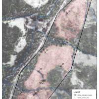 Wedderburn Blue Mallee Restoration Site - 1952 aerial photography