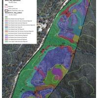 Wedderburn Blue Mallee Restoration Site - Current Vegetation Patterns